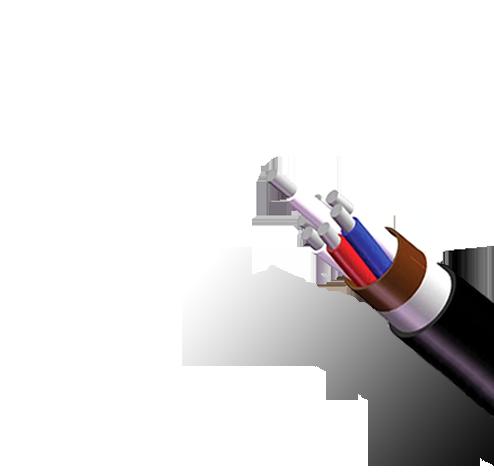 Кабель АКВВГЭнг